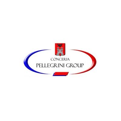 Conceria Pellegrini Group